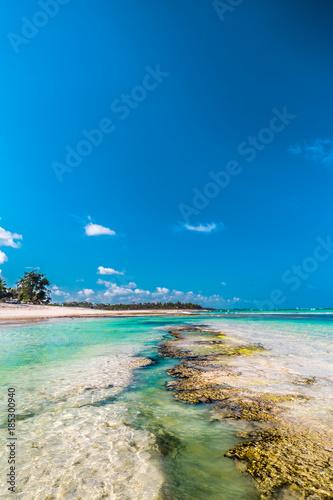 Staande foto Scandinavië Diana Beach in Kenia