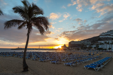 GRAN CANARIA, SPAIN - DECEMBER 10, 2017: Palm tree and sunbeds in the sunset at Puerto Rico Beach in Gran Canaria, Spain. Canary Islands had 13.3 million visitors in 2016.