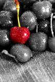 Cherry drying on a tea towel with selective color
