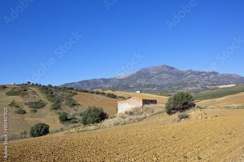 Foto op Canvas Natuur plowed fields and barn