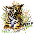 tiger cub. forest animals watercolor illustration