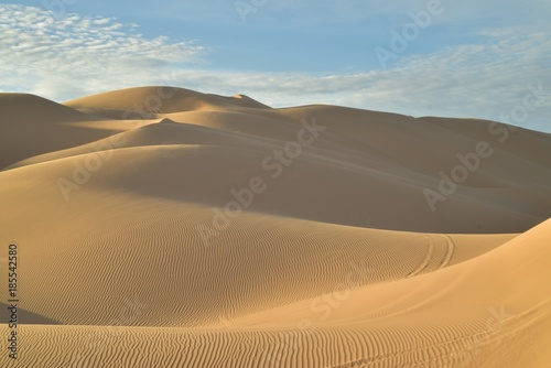 Foto Murales morning at the dunes Imperial Sand Dunes, California