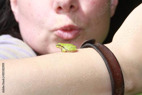 Aluminium Kikker kiss the frog