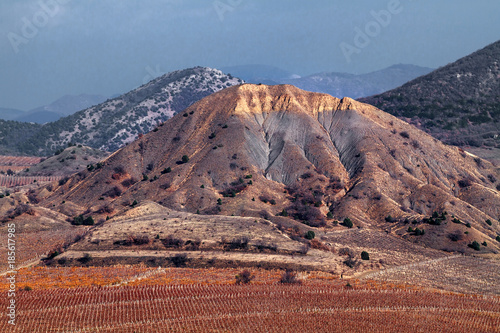 Vineyard Vineyards. The Autumn Valley