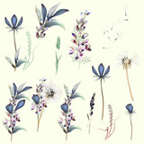 Collection of vector filed flowers - 185638131