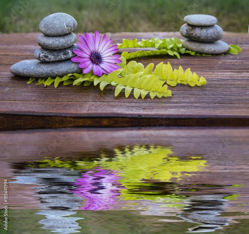 In de dag Stenen in het Zand reflejos de naturaleza