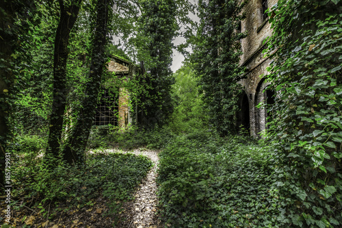 Papiers peints Route dans la forêt All'interno dell'EX Zuccherificio Eridania, Forlì 3