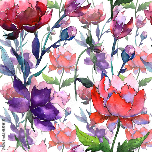 Wildflower peony flower pattern in a watercolor style. Full name of the plant: peony. Aquarelle wild flower for background, texture, wrapper pattern, frame or border. - 185768187