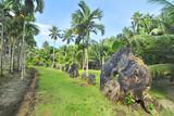 Fototapeta Rocks - Rai, or stone money in Gael bank on the island of Yap, Micronesia  © robnaw
