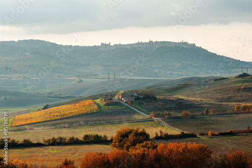 Deurstickers Toscane Tuscan countryside landscape panoramic view in an autumn day, Tuscany, Italy