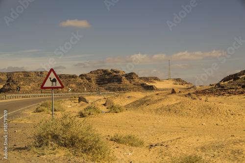 Foto op Plexiglas Honing Desert Landscape