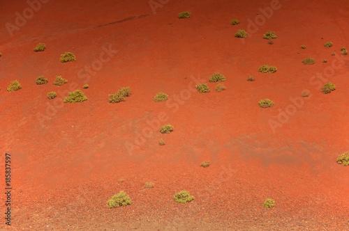 Foto op Plexiglas Koraal Lanzarote, Kanarische Inseln