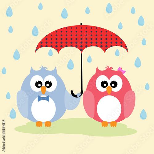 Keuken foto achterwand Uilen cartoon Cute lovely owls couple under umbrella.þ Greeting card