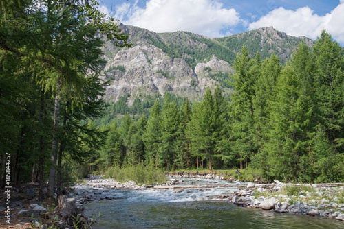 Aluminium Lente Beautiful summer landscape with mountains, forest and a river in front.