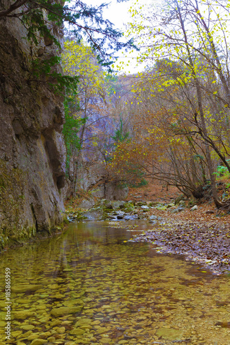 River in the mountains background