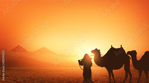 Foto op Plexiglas Oranje eclat Camel and Bedouin in the wild landscape of the pyramids of Africa