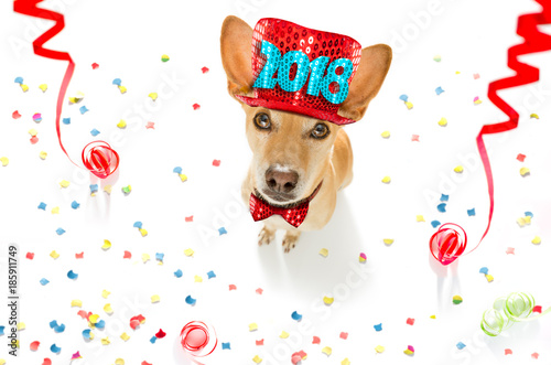 happy new year dog Poster