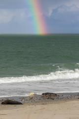 Helgoland - Düne - Regenfront mit Regenbogen