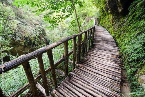 Fotobehang Olijf Pathway Wooden Footbridge