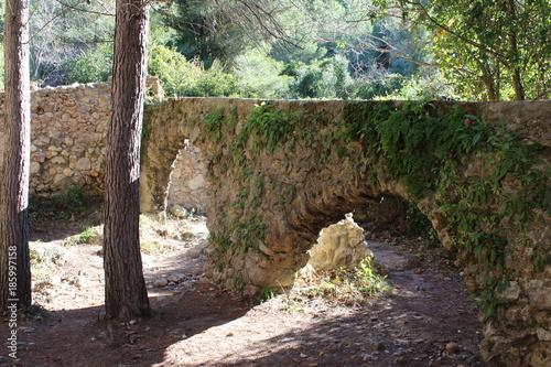 Foto op Plexiglas Weg in bos Acueducto