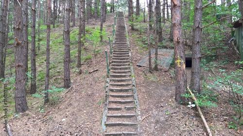 Papiers peints Route dans la forêt Lost Place - Unendliche Treppe