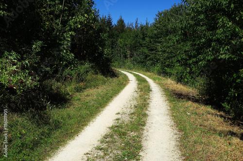 Papiers peints Route dans la forêt Waldweg
