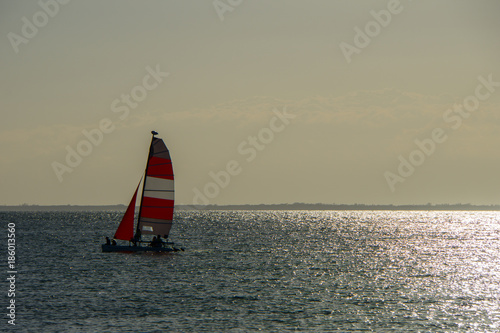 Fotobehang Zeilen USA, Florida, Sailing ship in the wind of the ocean with sun reflections