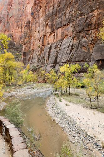 Foto op Canvas Natuur Zion park in USA