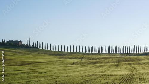 Deurstickers Toscane traditional Tuscany landscape