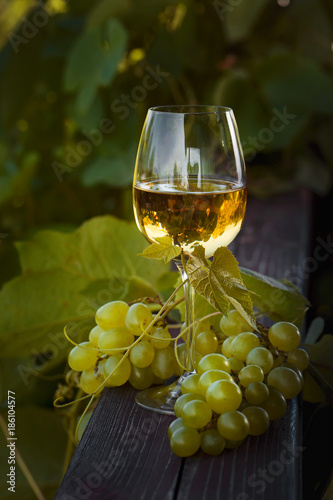 Vineyard White wine with grapes.