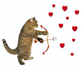 The cat shoots an arrow from the bow in the heart. White background.