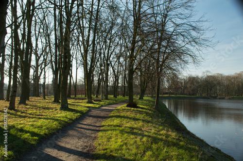 Foto op Plexiglas Weg in bos Droga