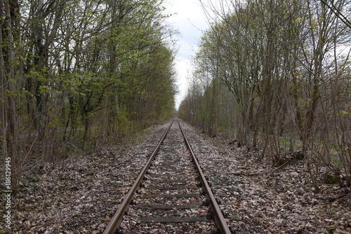 In de dag Spoorlijn Altes Gleis bei Wünsdorf