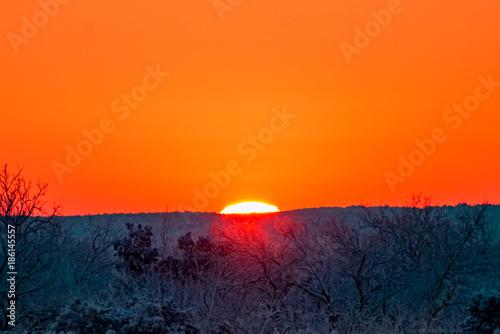 In de dag Oranje eclat Snow Day Deer