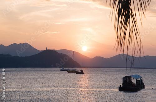 Foto op Canvas Zee zonsondergang Coconut tree style
