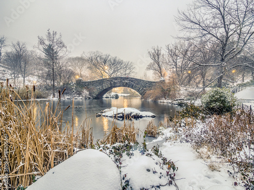 Gapstow bridge Central Park, New York City - 186205367