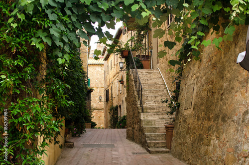 Foto Murales Old italian street in Pienza