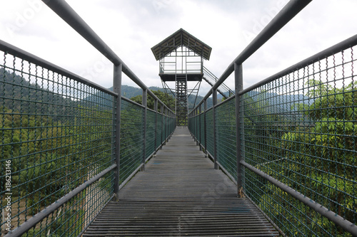 Keuken foto achterwand Olijf Treetop canopy walk with sky in the evening
