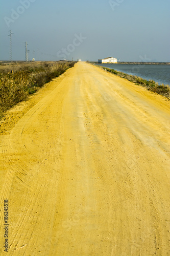 Fotobehang Oranje Landscape of a dirt road in the marshes