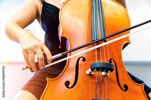 Foto Murales Close up of cello with bow in hands