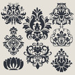 Vintage flower design elements