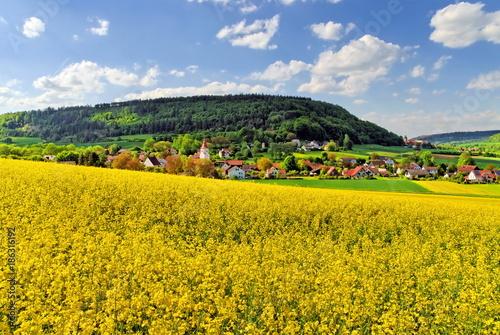 Fotobehang Landschappen Biberbach bei Beilngries im Altmühltal