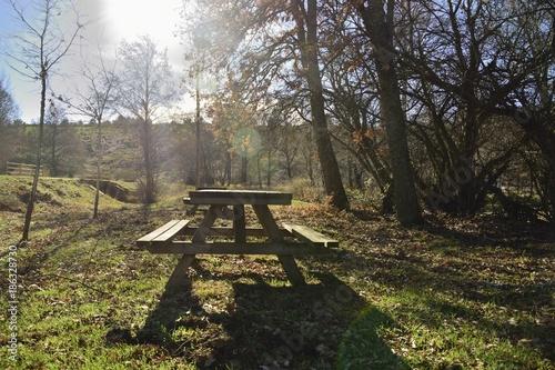 Foto op Plexiglas Weg in bos merendero