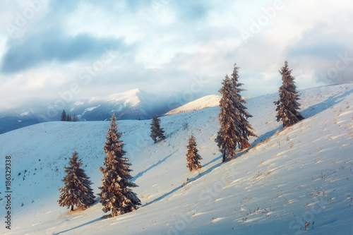 Plexiglas Winter Fantastic orange winter landscape in snowy mountains glowing by sunlight. Dramatic wintry scene with snowy trees. Christmas holiday concept. Carpathians mountain, Ukraine, Europe
