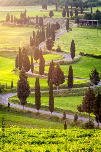 Deurstickers Toscane Winding road near Monticchiello village, Tuscany, Italy