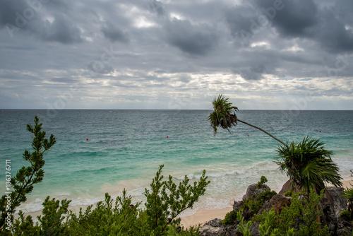 Foto op Aluminium Tropical strand Ancient Seacoast in Mexico