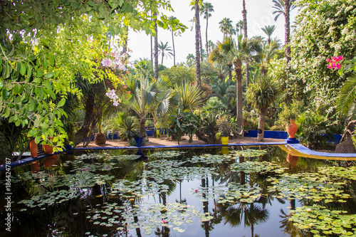 Majorelle Garden Marrakech Yves Saint Laurent Home remember garden Morocco what you should definitely have during your vacation
