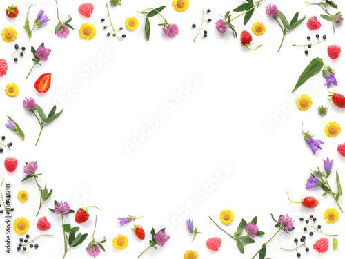 Composition pattern from plants, wild flowers and red berries, isolated on white background, flat lay, top view. The concept of summer, spring, Mother's Day, March 8. Frame of flowers and berries. - 186431710
