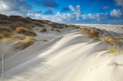 sand dunes by North sea beach on sunny day