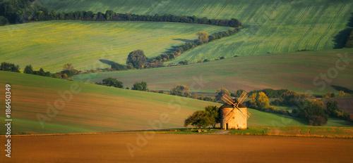 Foto Murales Old windmill, Moravian fields, Moravia, Czech Republic, around the village Kyjov